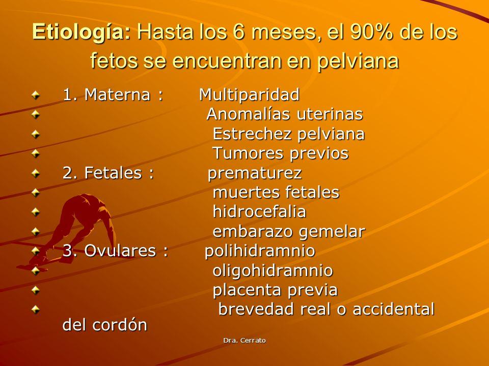 Dra. Cerrato Etiología: Hasta los 6 meses, el 90% de los fetos se encuentran en pelviana 1. Materna : Multiparidad Anomalías uterinas Anomalías uterin