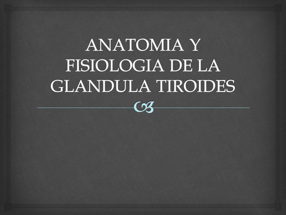 CLASIFICACIÓN DE HIPOTIROIDISMO 1)Primario Congénito Atireosis Ectopia dishormonogenesis Adquirido déficit de yodo autoinmunidad 131 I Postquirurgico anti-tiroideos exceso de iodo 2) Secundario Tumor hipofisario Granuloma hipofisiario.