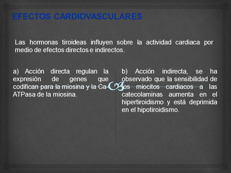 Las hormonas tiroideas influyen sobre la actividad cardiaca por medio de efectos directos e indirectos.