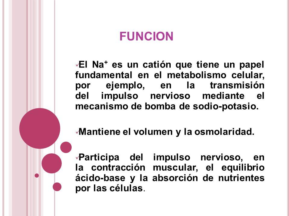 FUNCION El Na + es un catión que tiene un papel fundamental en el metabolismo celular, por ejemplo, en la transmisión del impulso nervioso mediante el
