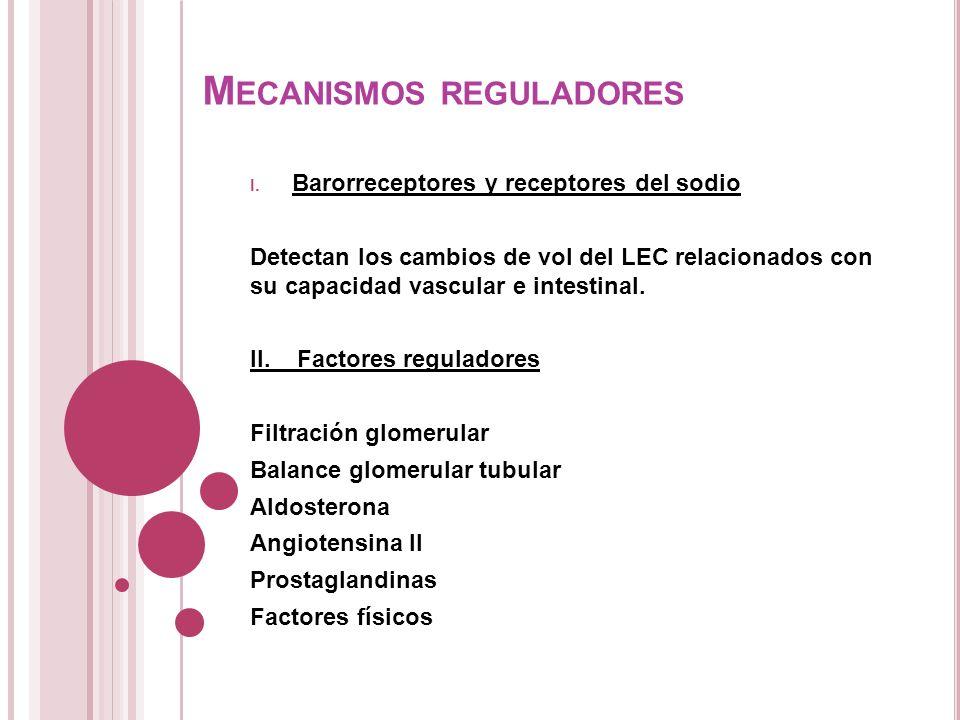 M ECANISMOS REGULADORES I. Barorreceptores y receptores del sodio Detectan los cambios de vol del LEC relacionados con su capacidad vascular e intesti