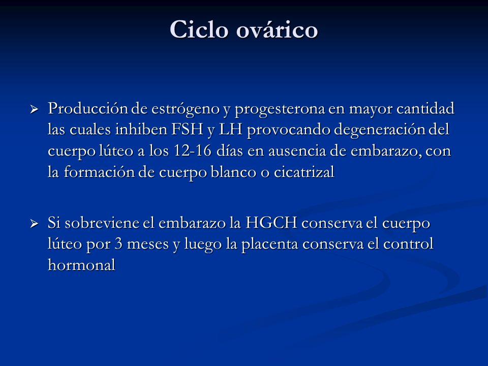 Ciclo ovárico Producción de estrógeno y progesterona en mayor cantidad las cuales inhiben FSH y LH provocando degeneración del cuerpo lúteo a los 12-1
