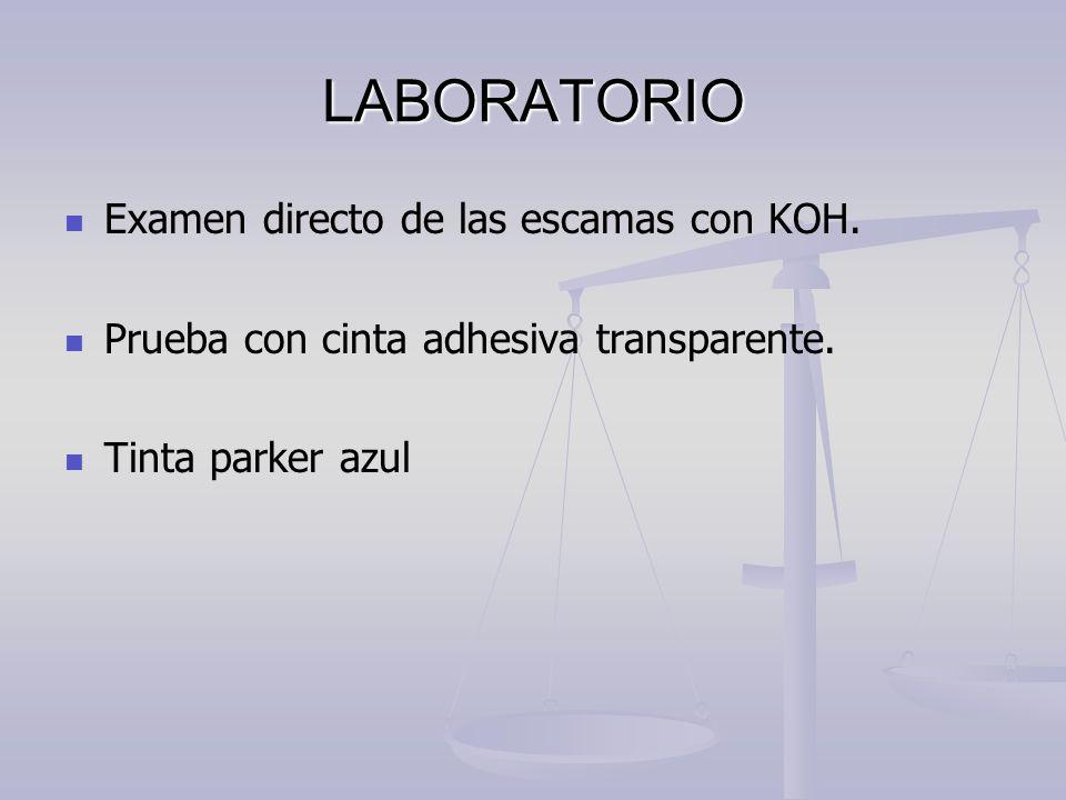 LABORATORIO Examen directo de las escamas con KOH. Prueba con cinta adhesiva transparente. Tinta parker azul