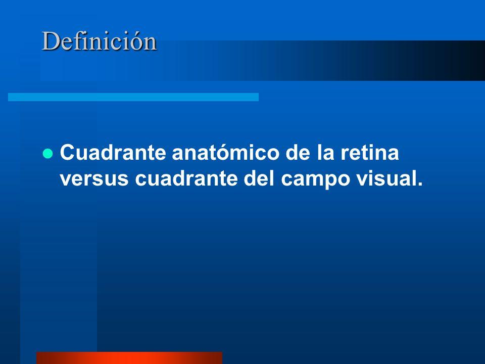 Campo visual/anatomía de la retina