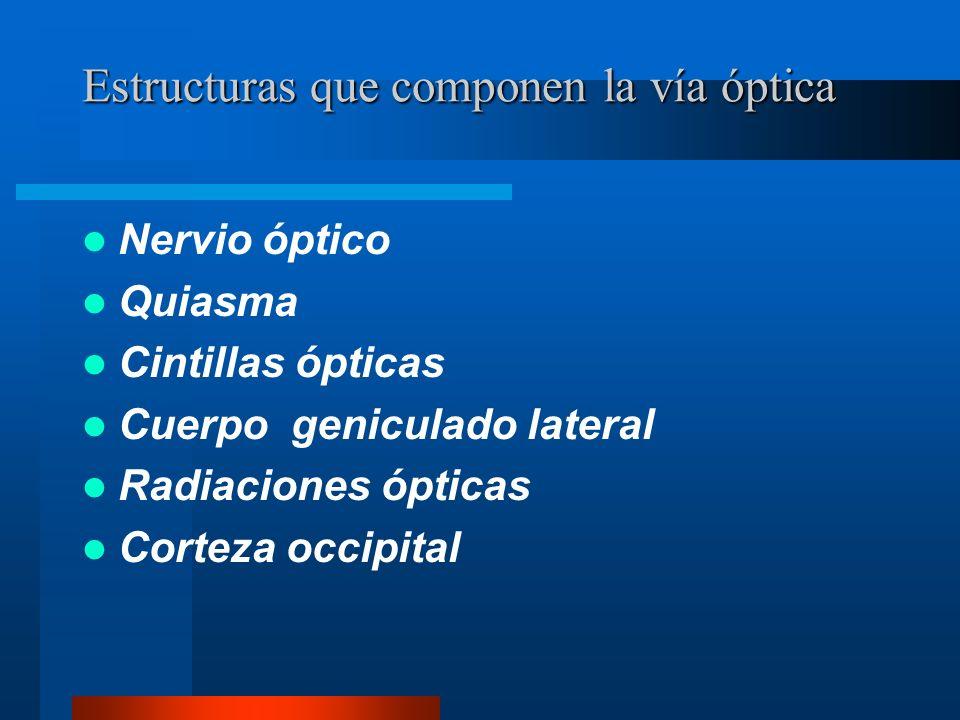 Afección del quiasma Agudeza visual conservada.RFM directo y consensual ambos ojos normales.