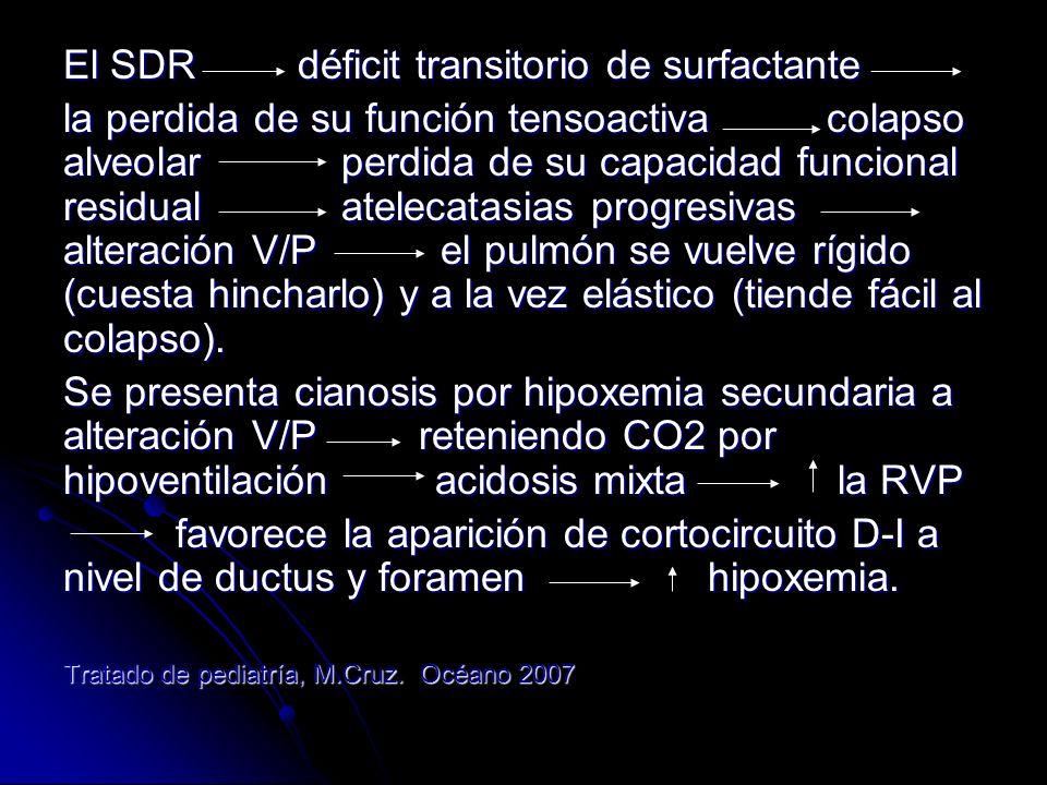 En el pulmón microatelectasias difusas, edema, congestión vascular y lesión del epitelio respiratorio bronquiolos terminales.