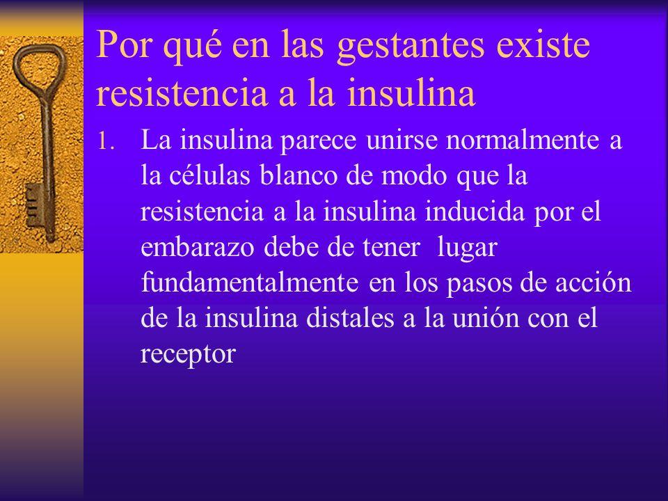 Por qué en las gestantes existe resistencia a la insulina 1. La insulina parece unirse normalmente a la células blanco de modo que la resistencia a la