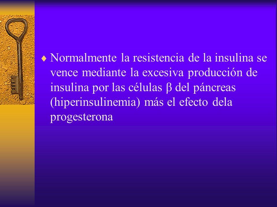 Normalmente la resistencia de la insulina se vence mediante la excesiva producción de insulina por las células β del páncreas (hiperinsulinemia) más e