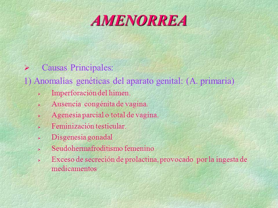 AMENORREA Causas Principales: 1) Anomalías genéticas del aparato genital: (A. primaria) Imperforación del himen. Ausencia congénita de vagina. Agenesi