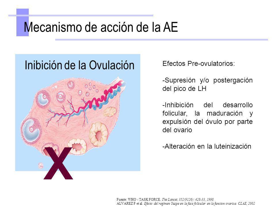 X Mecanismo de acción de la AE Inibición de la Ovulación Fuente: WHO - TASK FORCE. The Lancet, 352(9126): 428-33, 1998 ALVAREZ F et al. Efecto del reg
