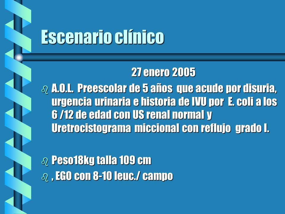 Escenario clínico 27 enero 2005 27 enero 2005 b A.O.L. Preescolar de 5 años que acude por disuria, urgencia urinaria e historia de IVU por E. coli a l
