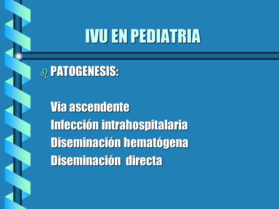 IVU EN PEDIATRIA IVU EN PEDIATRIA b PATOGENESIS: Via ascendente Via ascendente Infección intrahospitalaria Infección intrahospitalaria Diseminación he