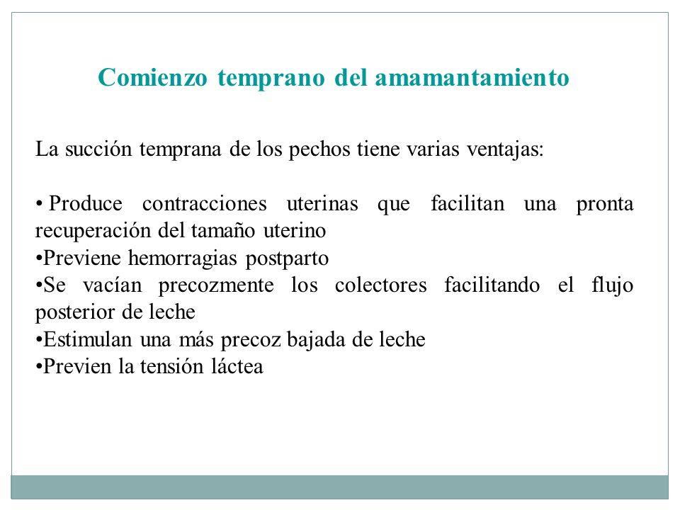 Comienzo temprano del amamantamiento La succión temprana de los pechos tiene varias ventajas: Produce contracciones uterinas que facilitan una pronta