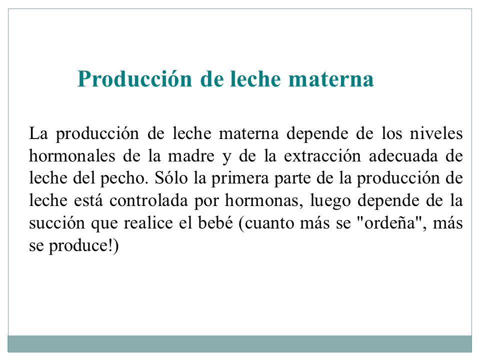 Producción de leche materna La producción de leche materna depende de los niveles hormonales de la madre y de la extracción adecuada de leche del pech