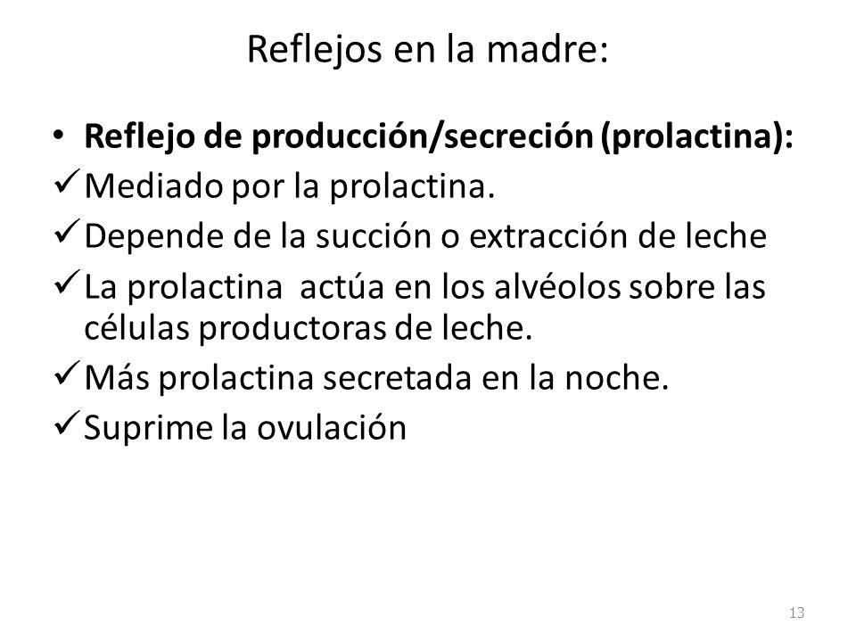 Reflejos en la madre: Reflejo de producción/secreción (prolactina): Mediado por la prolactina. Depende de la succión o extracción de leche La prolacti