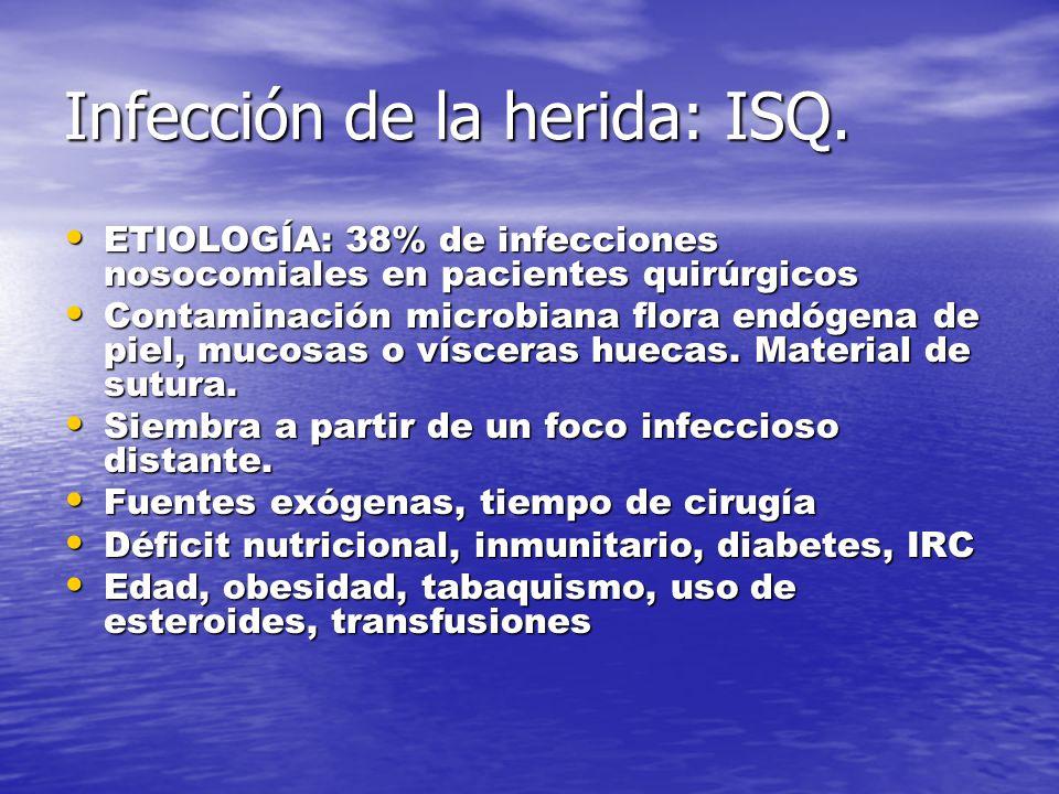 Infección de la herida: ISQ. ETIOLOGÍA: 38% de infecciones nosocomiales en pacientes quirúrgicos ETIOLOGÍA: 38% de infecciones nosocomiales en pacient