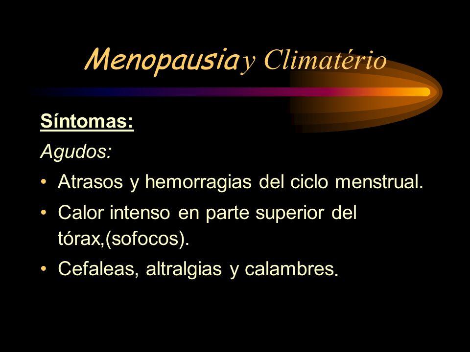 MANIFESTACIONES CLINICAS Las manifestaciones clínicas de la menopausia pueden dividirse en tres grandes grupos: de corto mediano y largo plazo.