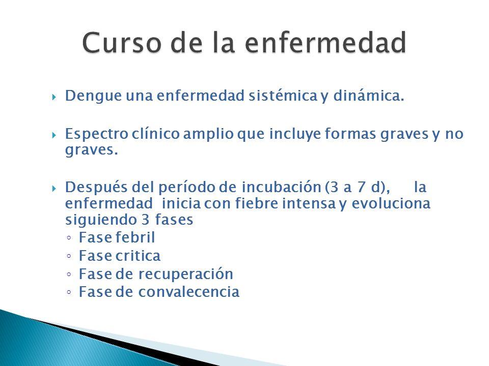 Dengue una enfermedad sistémica y dinámica. Espectro clínico amplio que incluye formas graves y no graves. Después del período de incubación (3 a 7 d)
