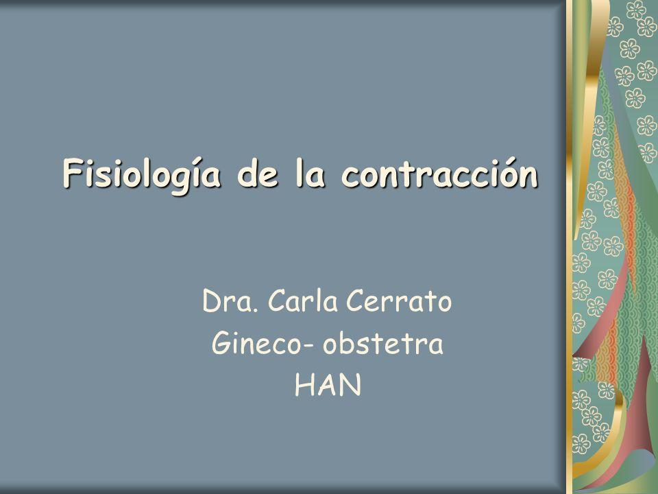 Fisiología de la contracción Dra. Carla Cerrato Gineco- obstetra HAN