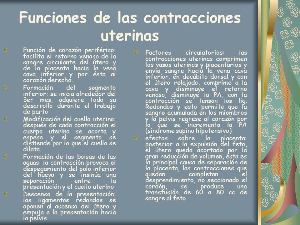 Funciones de las contracciones uterinas Función de corazón periférico: facilita el retorno venoso de la sangre circulante del útero y de la placenta h