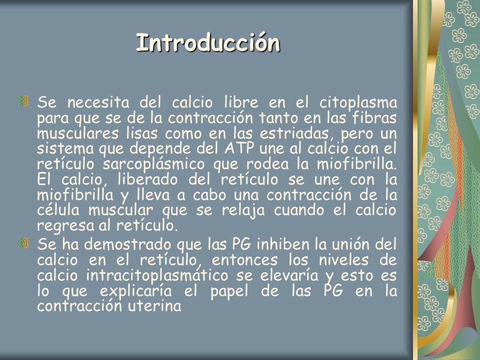Introducción Se necesita del calcio libre en el citoplasma para que se de la contracción tanto en las fibras musculares lisas como en las estriadas, p