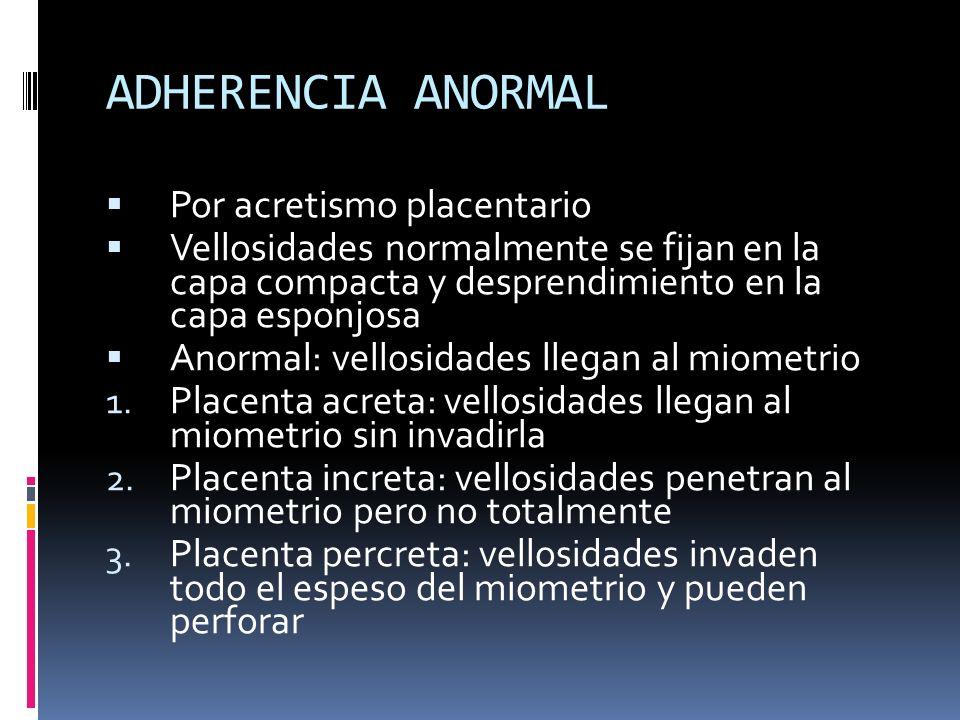 ADHERENCIA ANORMAL Por acretismo placentario Vellosidades normalmente se fijan en la capa compacta y desprendimiento en la capa esponjosa Anormal: vel