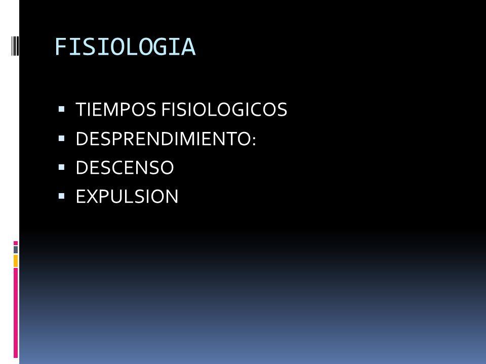 FISIOLOGIA TIEMPOS FISIOLOGICOS DESPRENDIMIENTO: DESCENSO EXPULSION