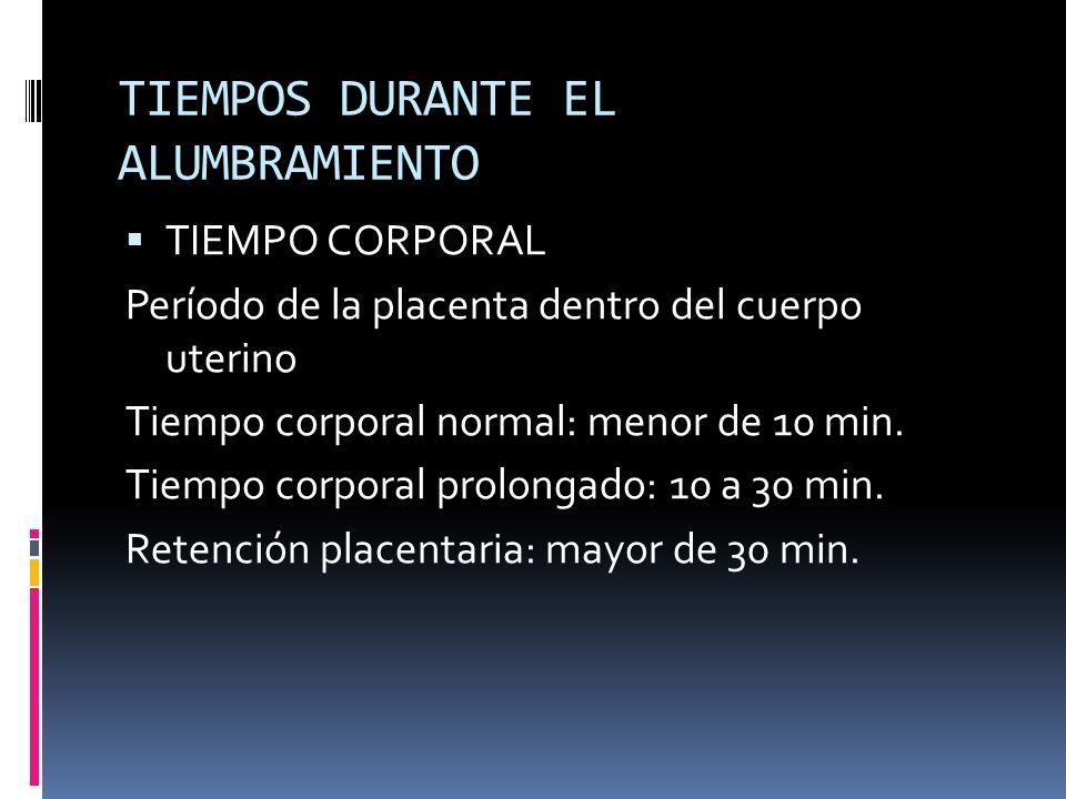 TIEMPOS DURANTE EL ALUMBRAMIENTO TIEMPO CORPORAL Período de la placenta dentro del cuerpo uterino Tiempo corporal normal: menor de 10 min. Tiempo corp