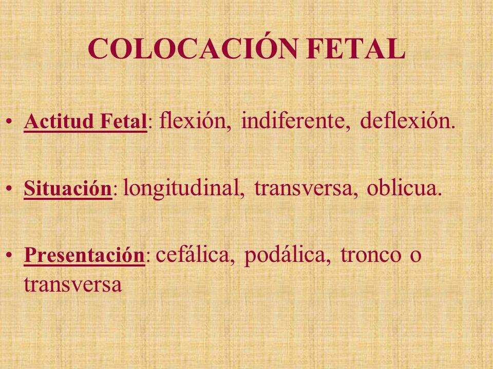 COLOCACIÓN FETAL Actitud Fetal: flexión, indiferente, deflexión. Situación: longitudinal, transversa, oblicua. Presentación: cefálica, podálica, tronc