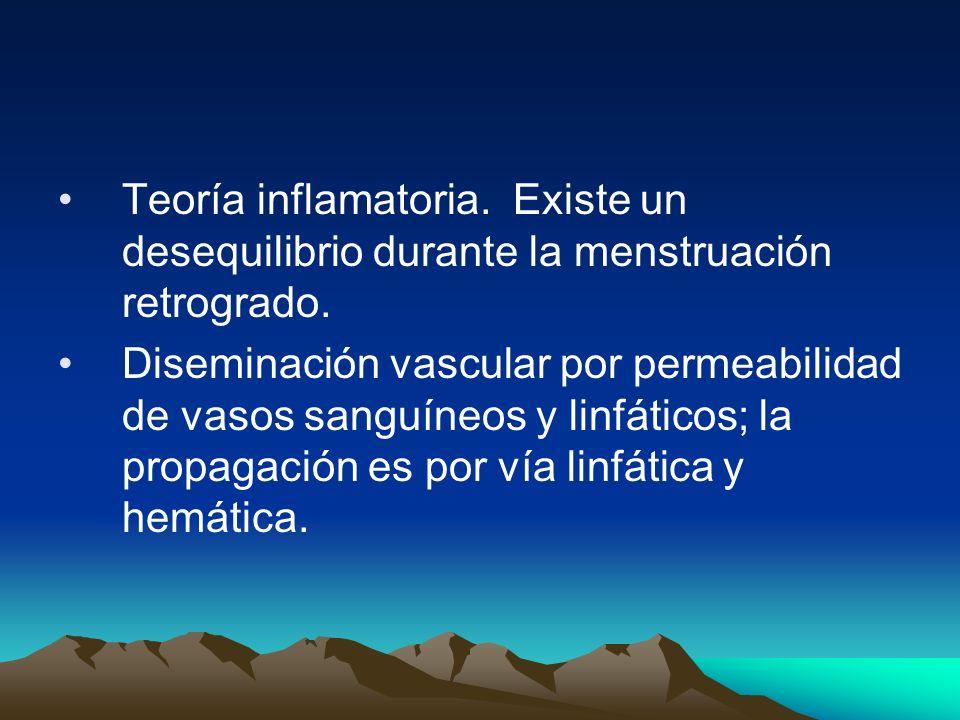 Teoría inflamatoria. Existe un desequilibrio durante la menstruación retrogrado. Diseminación vascular por permeabilidad de vasos sanguíneos y linfáti