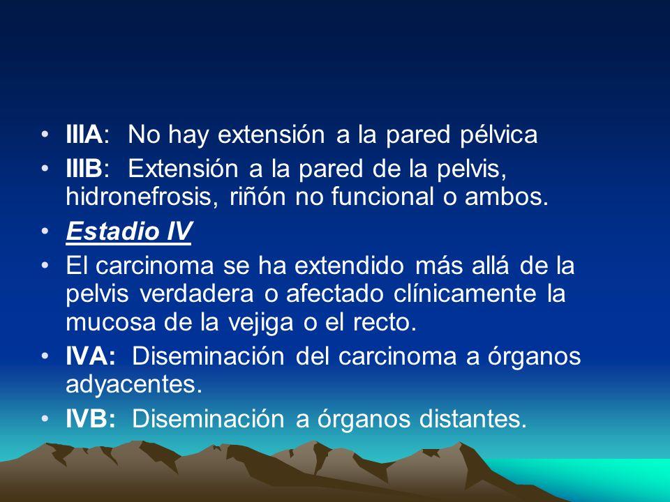 IIIA: No hay extensión a la pared pélvica IIIB: Extensión a la pared de la pelvis, hidronefrosis, riñón no funcional o ambos. Estadio IV El carcinoma