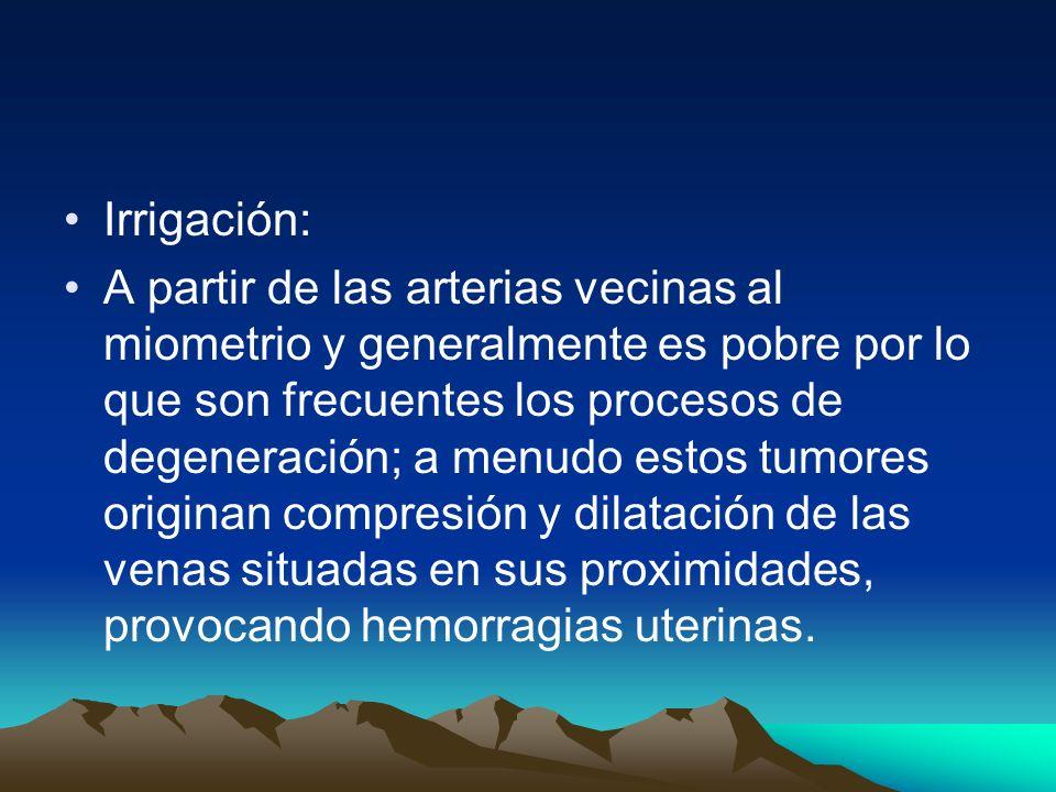 Irrigación: A partir de las arterias vecinas al miometrio y generalmente es pobre por lo que son frecuentes los procesos de degeneración; a menudo est
