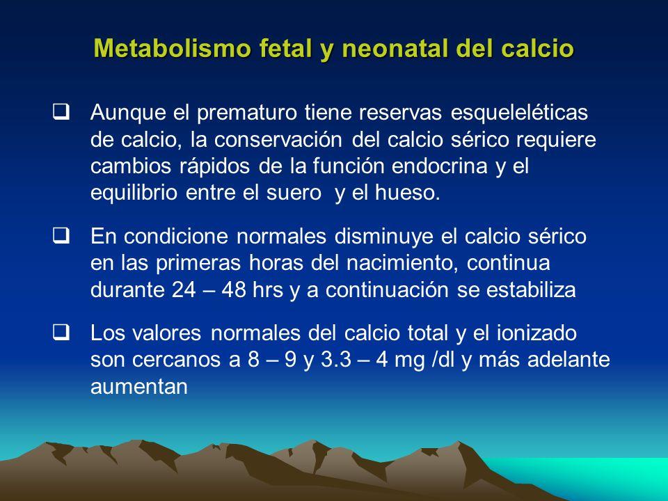 Aunque el prematuro tiene reservas esqueleléticas de calcio, la conservación del calcio sérico requiere cambios rápidos de la función endocrina y el e