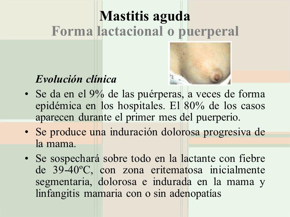 Mastitis aguda Forma lactacional o puerperal Evolución clínica Se da en el 9% de las puérperas, a veces de forma epidémica en los hospitales. El 80% d