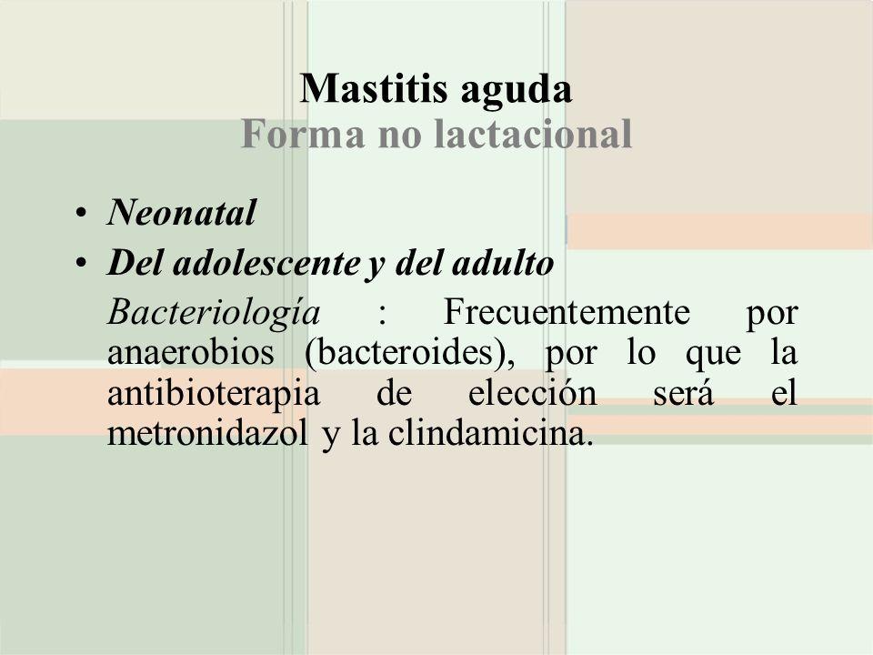 Mastitis aguda Forma no lactacional Neonatal Del adolescente y del adulto Bacteriología : Frecuentemente por anaerobios (bacteroides), por lo que la a