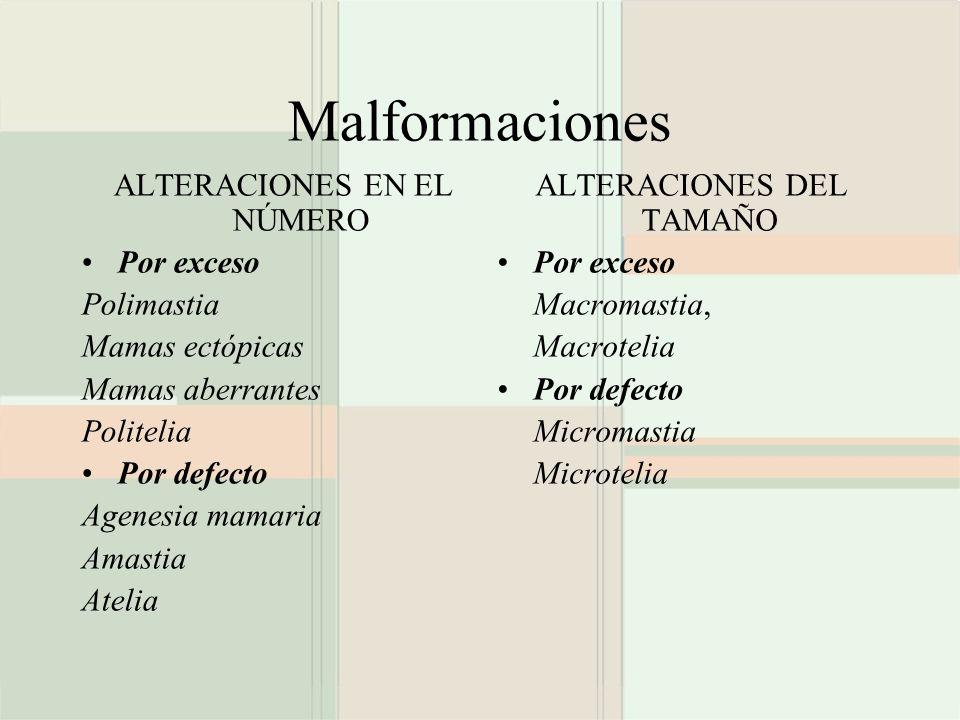 Malformaciones ALTERACIONES EN EL NÚMERO Por exceso Polimastia Mamas ectópicas Mamas aberrantes Politelia Por defecto Agenesia mamaria Amastia Atelia