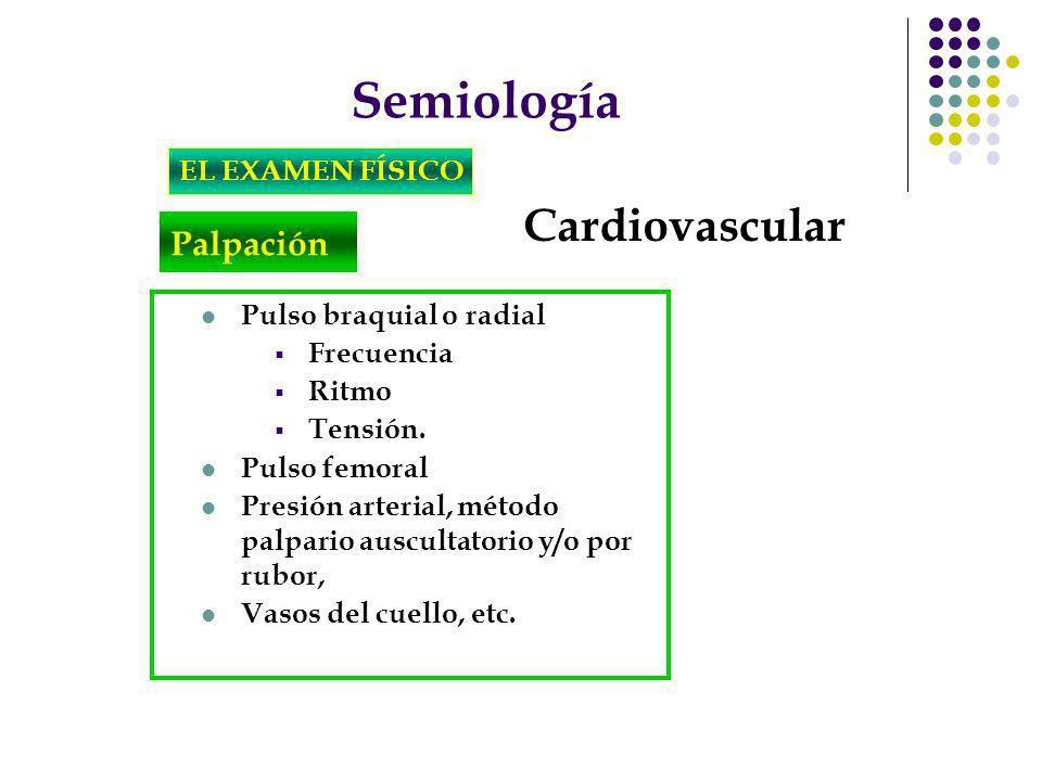 Semiología EL EXAMEN FÍSICO Cardiovascular Palpación Pulso braquial o radial Frecuencia Ritmo Tensión. Pulso femoral Presión arterial, método palpario