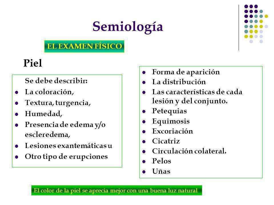 Semiología EL EXAMEN FÍSICO Piel Se debe describir: La coloración, Textura, turgencia, Humedad, Presencia de edema y/o escleredema, Lesiones exantemát