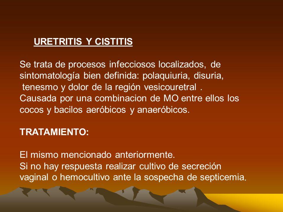 URETRITIS Y CISTITIS Se trata de procesos infecciosos localizados, de sintomatología bien definida: polaquiuria, disuria, tenesmo y dolor de la región vesicouretral.