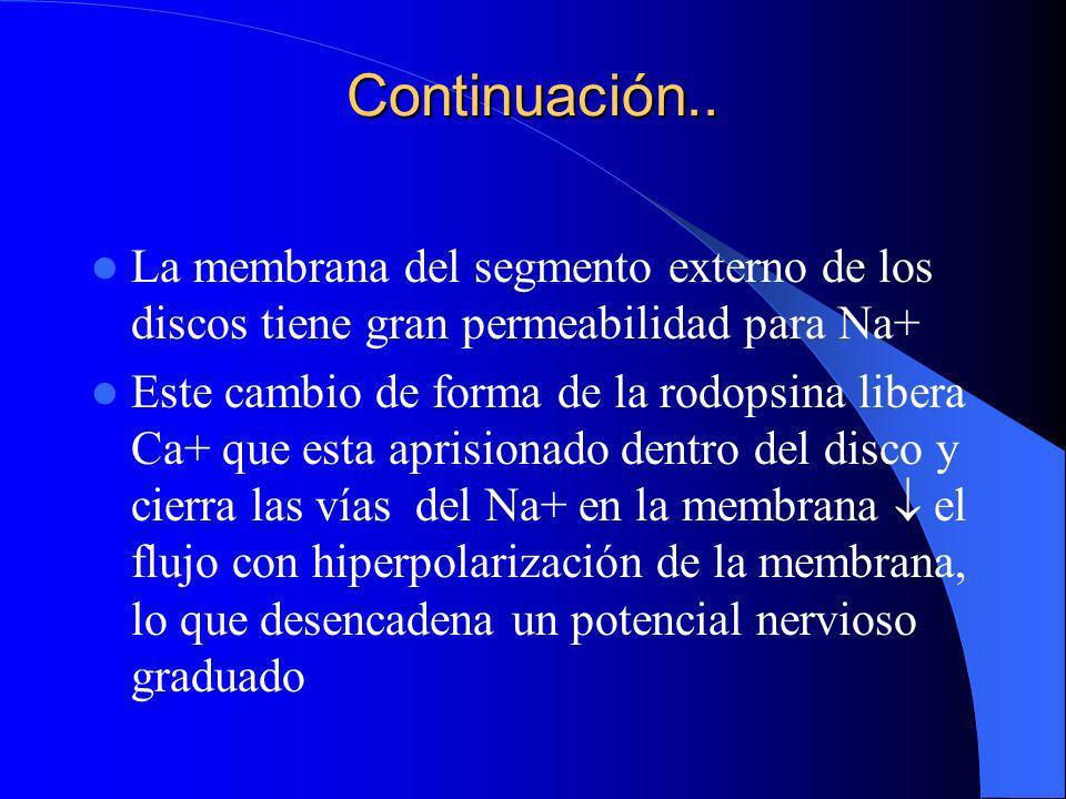 Continuación..