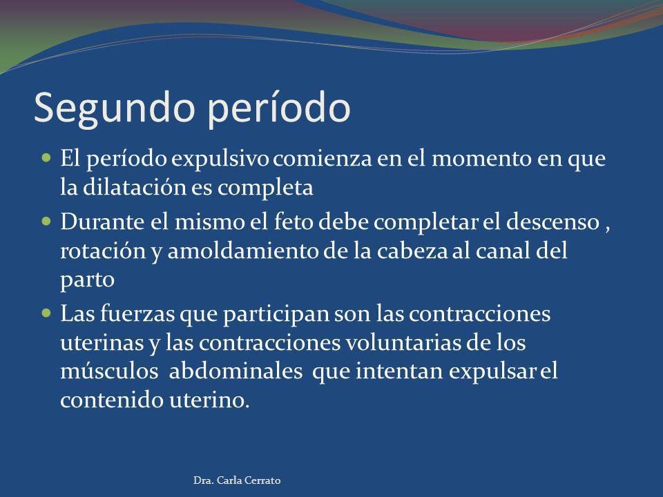 Segundo período El período expulsivo comienza en el momento en que la dilatación es completa Durante el mismo el feto debe completar el descenso, rota