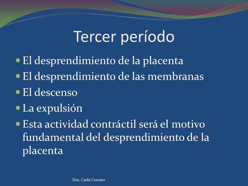 Tercer período El desprendimiento de la placenta El desprendimiento de las membranas El descenso La expulsión Esta actividad contráctil será el motivo