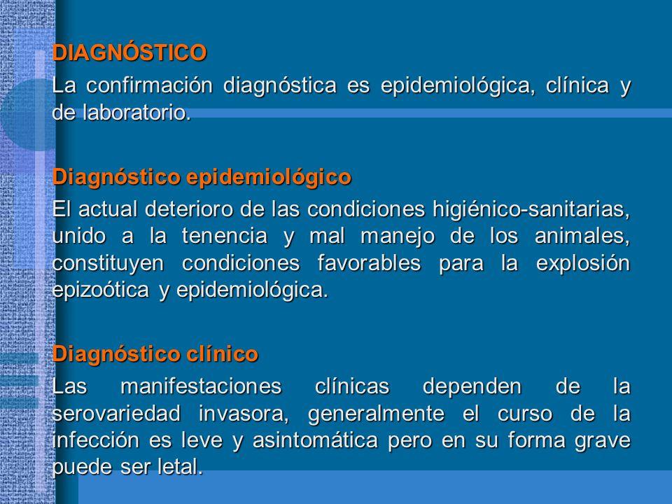 DIAGNÓSTICO La confirmación diagnóstica es epidemiológica, clínica y de laboratorio. La confirmación diagnóstica es epidemiológica, clínica y de labor