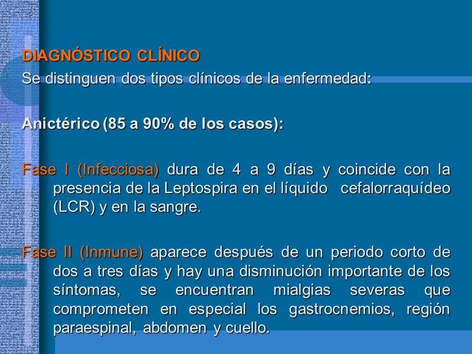 DIAGNÓSTICO CLÍNICO Se distinguen dos tipos clínicos de la enfermedad: Anictérico (85 a 90% de los casos): Fase I (Infecciosa) dura de 4 a 9 días y co