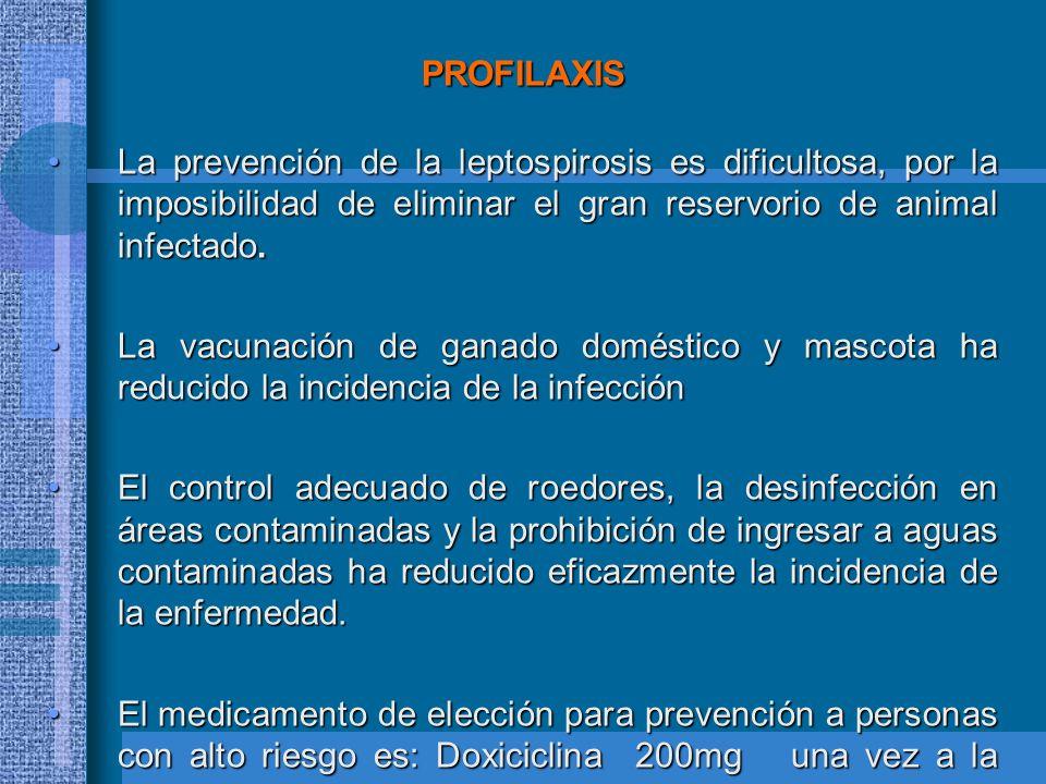 PROFILAXIS La prevención de la leptospirosis es dificultosa, por la imposibilidad de eliminar el gran reservorio de animal infectado.La prevención de