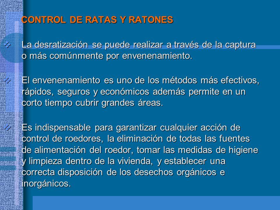 CONTROL DE RATAS Y RATONES CONTROL DE RATAS Y RATONES La desratización se puede realizar a través de la captura o más comúnmente por envenenamiento. L
