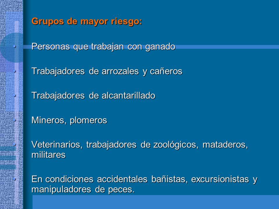 FISIOPATOLOGIA El periodo de incubación va de 5-14 días, limites 2-30 días.El periodo de incubación va de 5-14 días, limites 2-30 días.