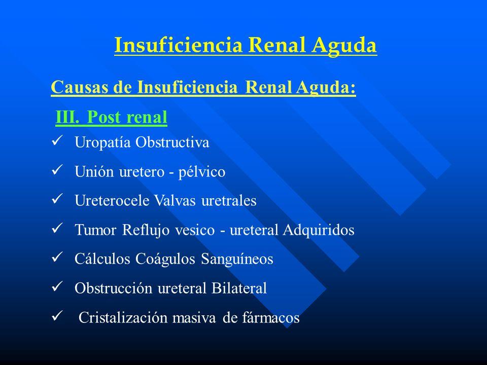 Insuficiencia Renal Aguda Causas de Insuficiencia Renal Aguda: III.