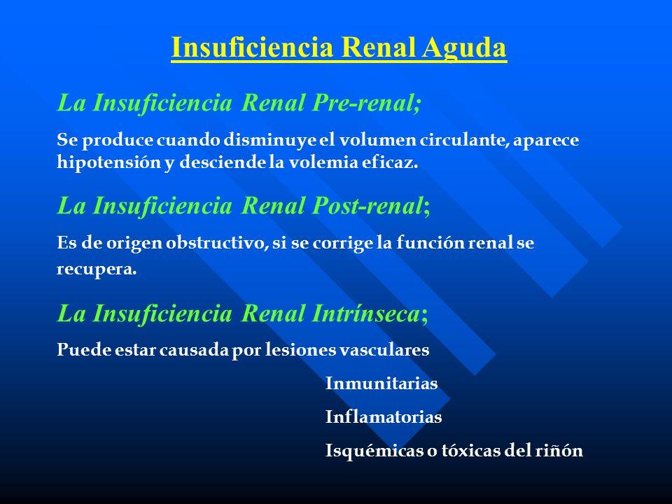 Insuficiencia Renal Aguda La Insuficiencia Renal Pre-renal; Se produce cuando disminuye el volumen circulante, aparece hipotensión y desciende la volemia eficaz.