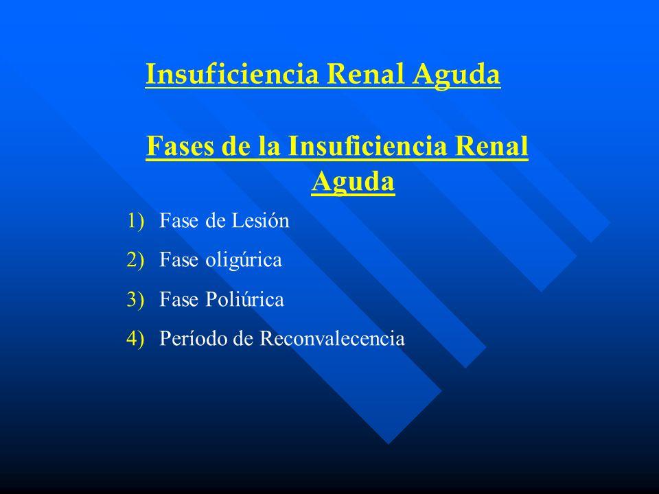 Insuficiencia Renal Aguda Fases de la Insuficiencia Renal Aguda 1)Fase de Lesión 2)Fase oligúrica 3)Fase Poliúrica 4)Período de Reconvalecencia